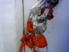 tele-bouquet-3